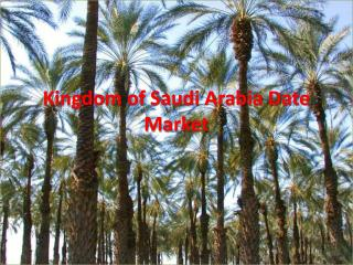 Kingdom of Saudi Arabia Date Market