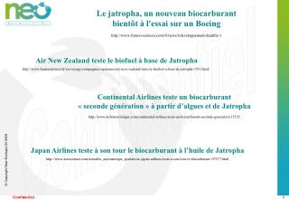 Le jatropha, un nouveau biocarburant  bientôt à l'essai sur un Boeing