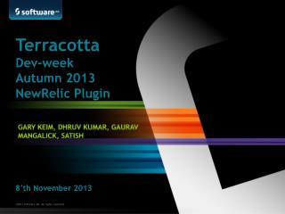Terracotta Dev -week  Autumn  2013   NewRelic  Plugin