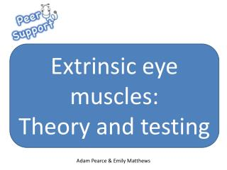 Extrinsic eye muscles: Theory and testing