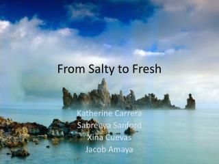 From Salty to Fresh