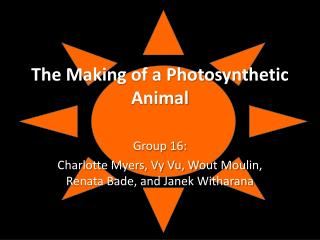 The Making of a Photosynthetic Animal