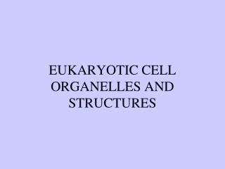 EUKARYOTIC CELL ORGANELLES AND STRUCTURES