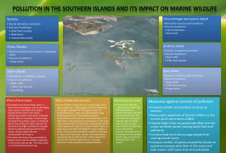 Pollution in the Southern Islands and its impact on marine wildlife
