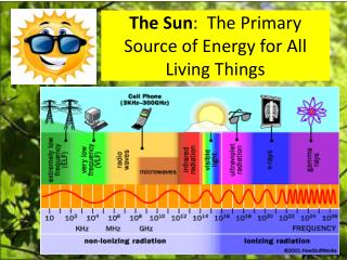 The Sun :  The Primary Source of Energy for All Living Things