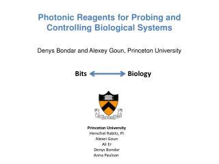 Princeton University Herschel Rabitz, PI Alexei Goun Ali  Er Denys Bondar Anna Paulson