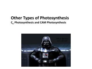 Other Types of Photosynthesis C 4   Photosynthesis and CAM  Photosynthesis