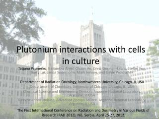 Plutonium interactions with cells in culture