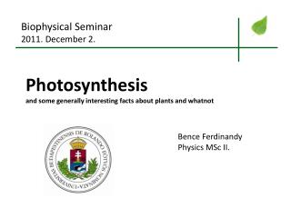Photosynthesis and some generally interesting facts about plants and whatnot