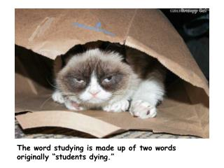 "The word studying is made up of two words originally ""students dying."""