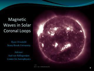 Magnetic Waves in Solar Coronal Loops