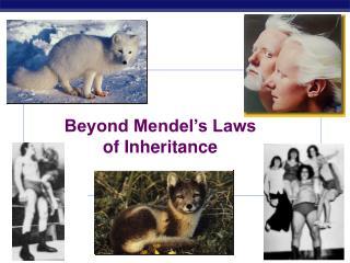 Beyond Mendel�s Laws of Inheritance