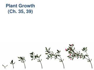 Plant Growth (Ch. 35, 39)