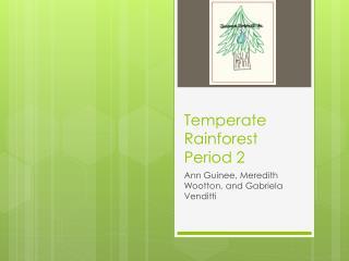 Temperate Rainforest Period 2