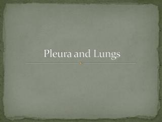 Pleura and Lungs