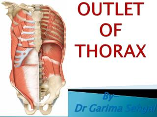 OUTLET OF THORAX