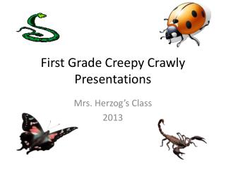 First Grade Creepy Crawly Presentations