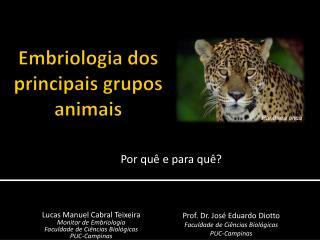 Embriologia dos principais grupos animais