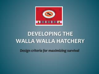 Developing the  walla walla  hatchery