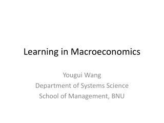 Learning in Macroeconomics