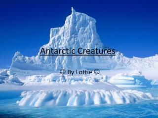 Antarctic Creatures