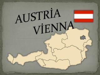 AUSTRİA     VİENNA