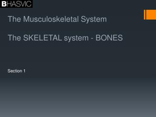 The Musculoskeletal System The SKELETAL system - BONES