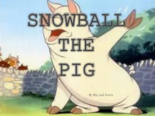 Snowball  T he  Pig