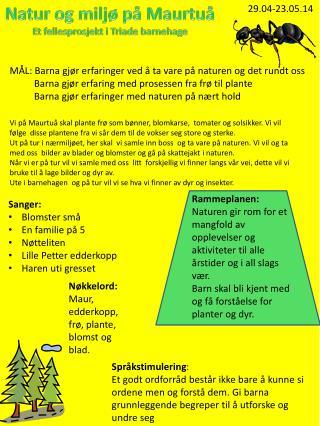 Natur og miljø på Maurtuå Et fellesprosjekt i Triade barnehage