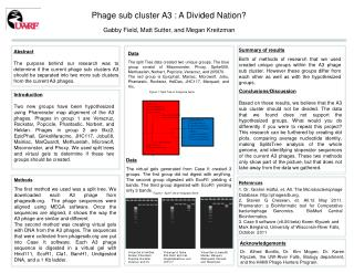 Phage  sub cluster A3  :  A Divided Nation?