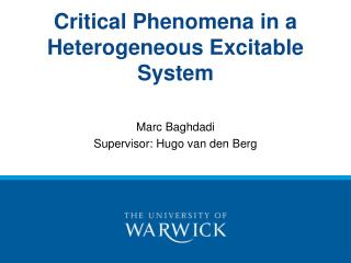 Critical Phenomena in a Heterogeneous Excitable System