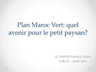 Plan Maroc Vert: quel avenir pour le petit paysan?