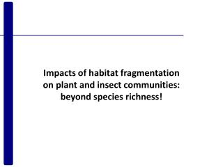 Impacts of habitat fragmentation on plant and insect communities: beyond species richness!