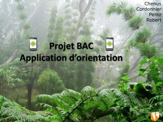 Projet BAC Application d'orientation