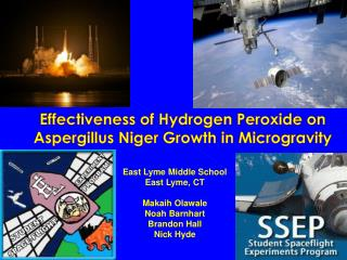 Effectiveness of Hydrogen Peroxide on Aspergillus Niger Growth in Microgravity