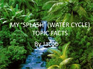 MY 'SPLASH' (WATER CYCLE) TOPIC FACTS