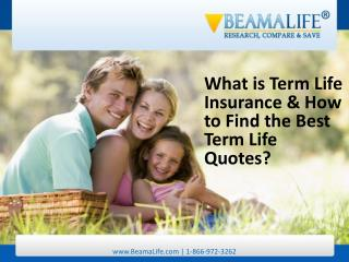 What is Term Life Insurance & How to Find the Best Term Life