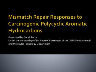 Mismatch Repair Responses to Carcinogenic Polycyclic Aromatic Hydrocarbons