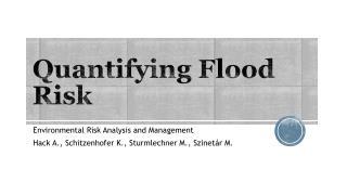 Quantifying Flood Risk