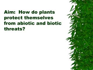 Aim:   How do plants protect themselves from abiotic and biotic threats?