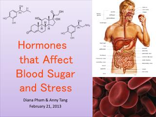 Hormones       that Affect      Blood Sugar       and Stress
