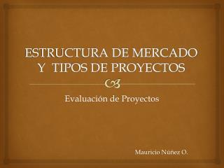 ESTRUCTURA DE MERCADO Y  TIPOS DE PROYECTOS