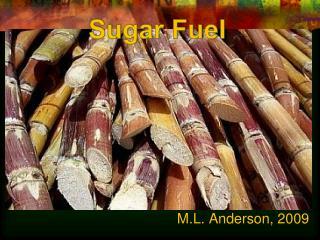Sugar Fuel