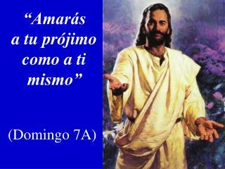 """""""Amarás  a tu prójimo como a ti mismo"""" (Domingo 7A)"""