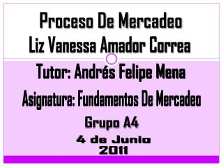 Proceso De Mercadeo