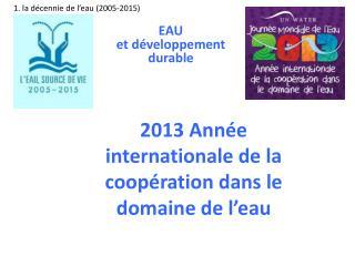 2013 Année internationale de la coopération dans le domaine de l'eau