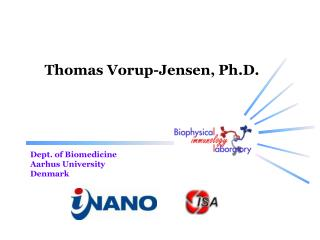 Thomas Vorup-Jensen,  Ph.D .