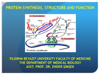 PROTEIN SYNTHESIS, STRUCTURE AND FUNCTION YILDIRIM  BEYAZIT  UNIVERSITY FACULTY OF MEDICINE