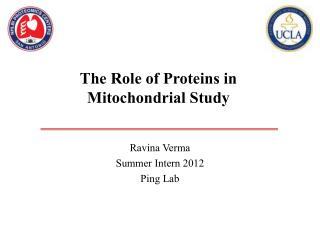 Ravina Verma Summer Intern 2012  Ping Lab
