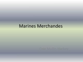 Marines Merchandes
